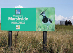 Welcome to Marshside Nature Reserve