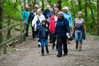 Formby Pinewoods Walks - 23rd July
